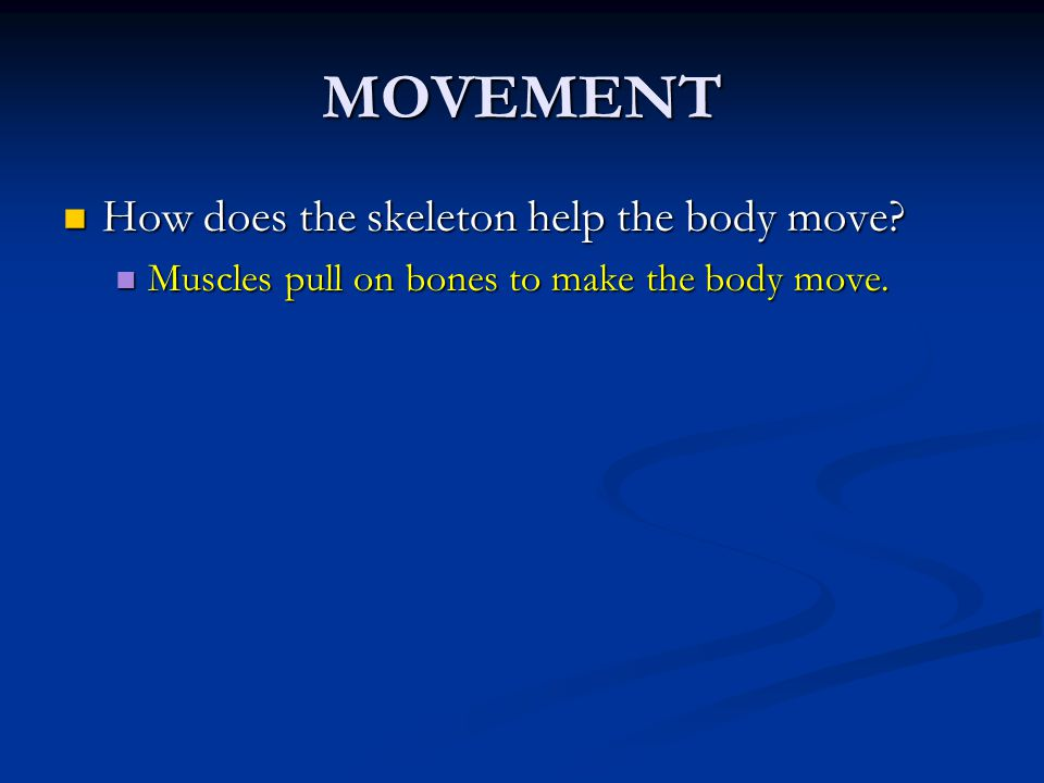 MOVEMENT How does the skeleton help the body move? How does the skeleton help the body move? Muscles pull on bones to make the body move. Muscles pull