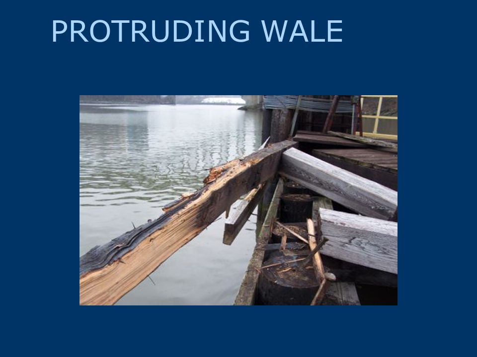 PROTRUDING WALE