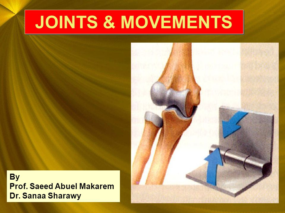JOINTS & MOVEMENTS JOINTS & MOVEMENTS By Prof. Saeed Abuel Makarem Dr. Sanaa Sharawy