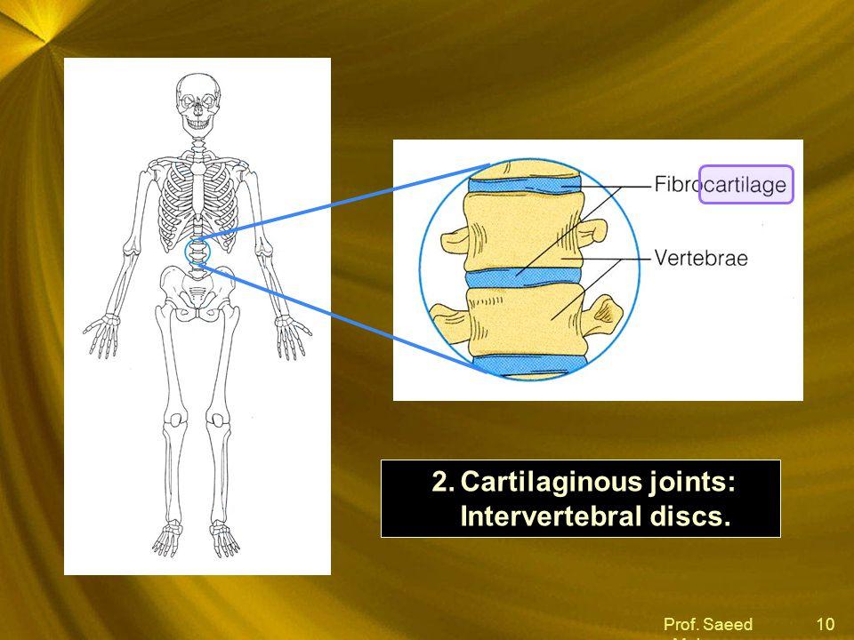 Prof. Saeed Makarem 10 2.Cartilaginous joints: Intervertebral discs.
