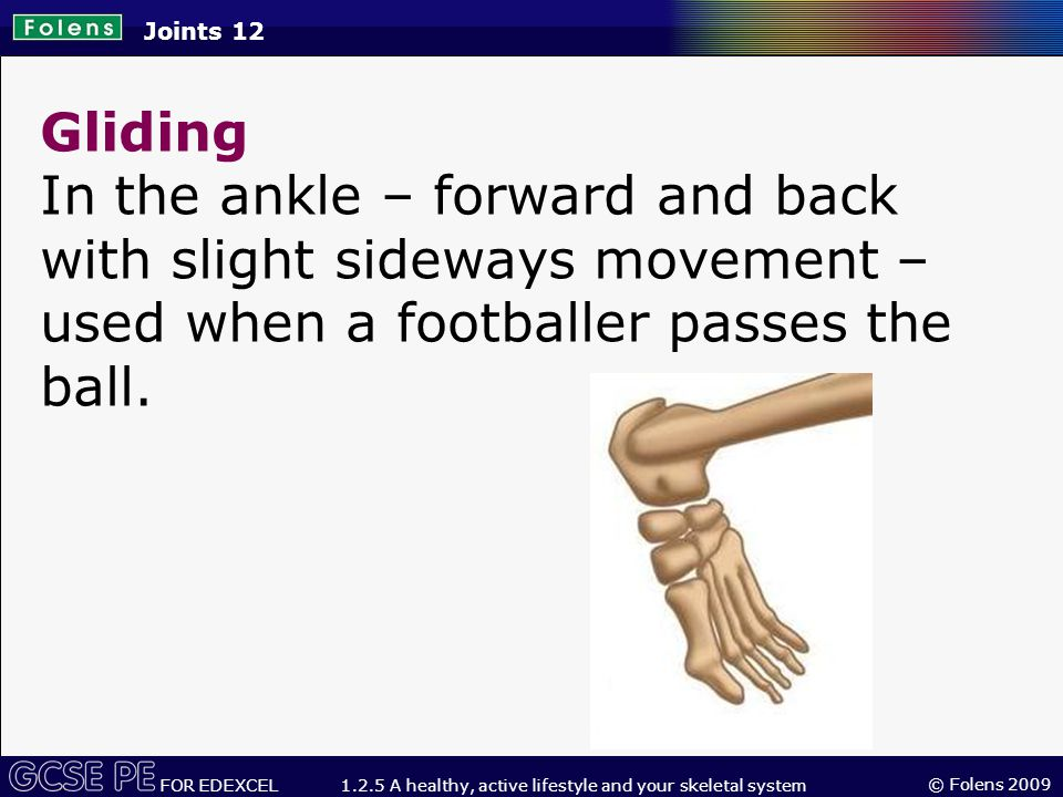 © Folens 2009 FOR EDEXCEL 1.2.5 A healthy, active lifestyle and your skeletal system Gliding In the ankle – forward and back with slight sideways movement – used when a footballer passes the ball.