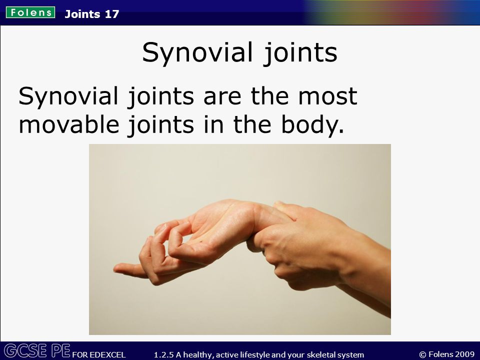 © Folens 2009 FOR EDEXCEL 1.2.5 A healthy, active lifestyle and your skeletal system Synovial joints Joints 17 Synovial joints are the most movable joints in the body.