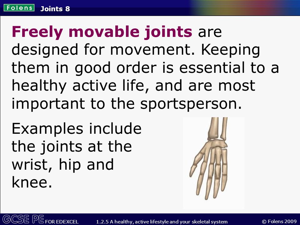 © Folens 2009 FOR EDEXCEL 1.2.5 A healthy, active lifestyle and your skeletal system Freely movable joints are designed for movement.