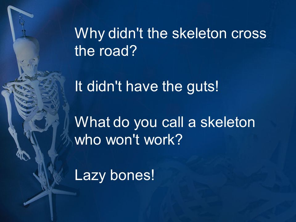 Why didn't the skeleton cross the road? It didn't have the guts! What do you call a skeleton who won't work? Lazy bones!