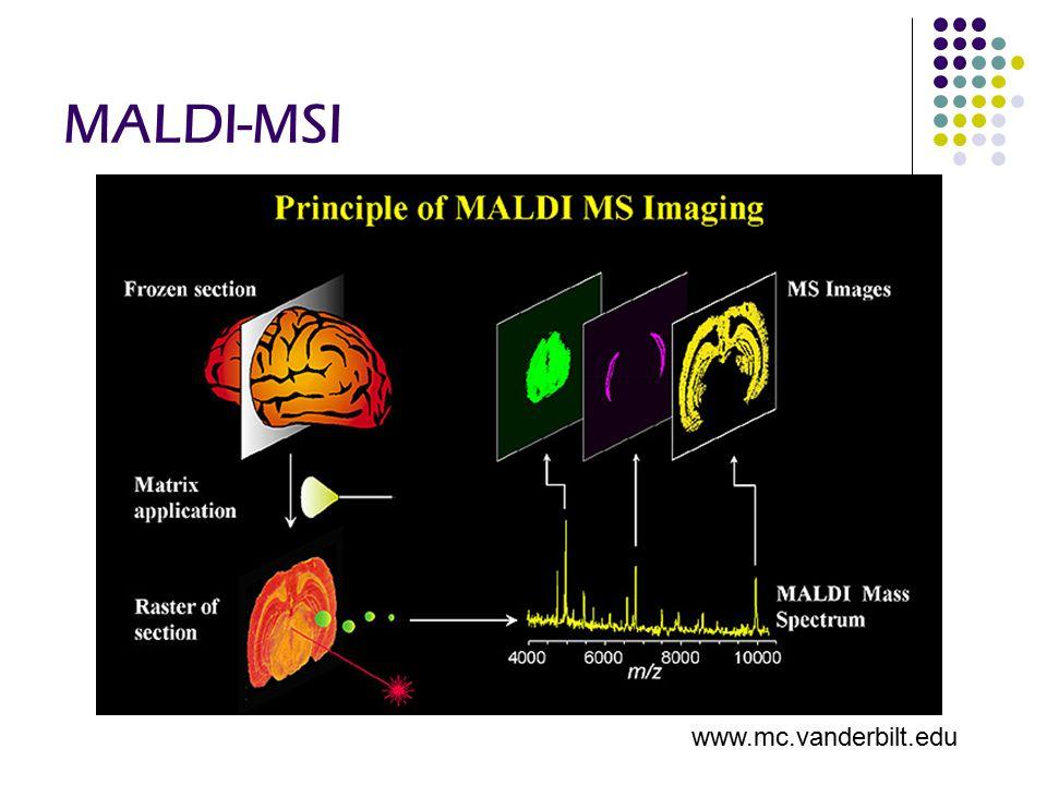 MALDI-MSI www.mc.vanderbilt.edu