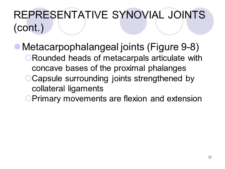 22 REPRESENTATIVE SYNOVIAL JOINTS (cont.) Metacarpophalangeal joints (Figure 9-8)  Rounded heads of metacarpals articulate with concave bases of the
