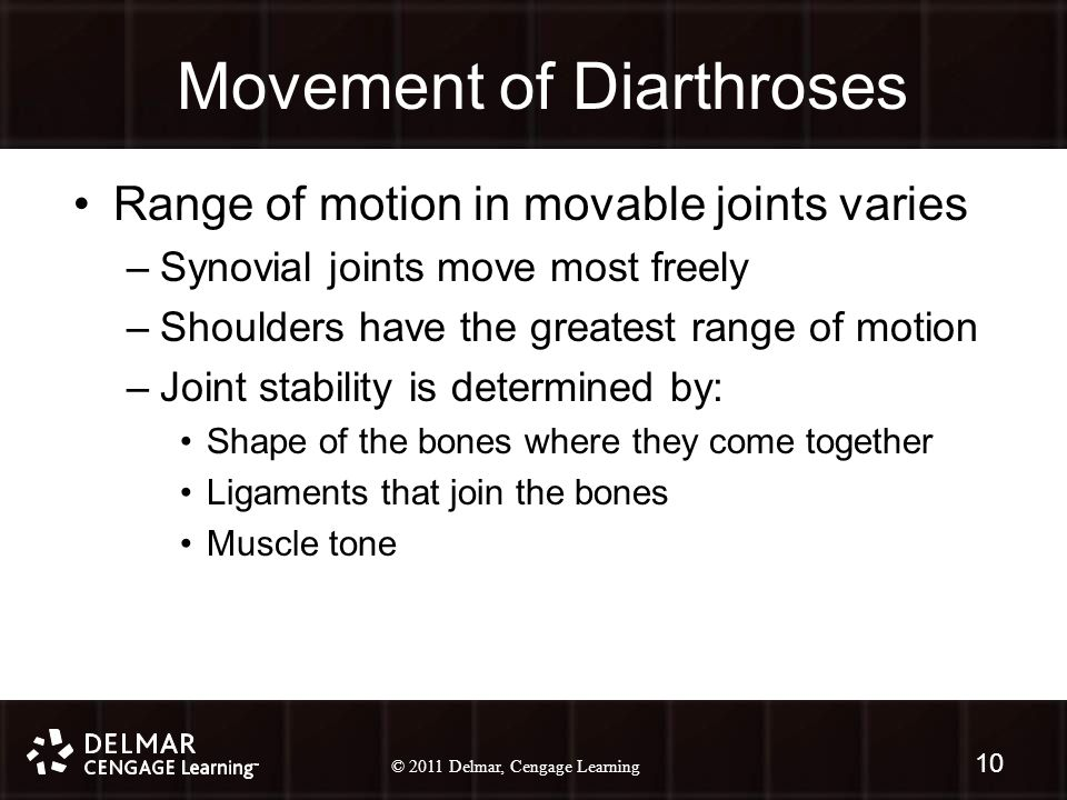 © 2010 Delmar, Cengage Learning 10 © 2011 Delmar, Cengage Learning Movement of Diarthroses Range of motion in movable joints varies –Synovial joints move most freely –Shoulders have the greatest range of motion –Joint stability is determined by: Shape of the bones where they come together Ligaments that join the bones Muscle tone 10