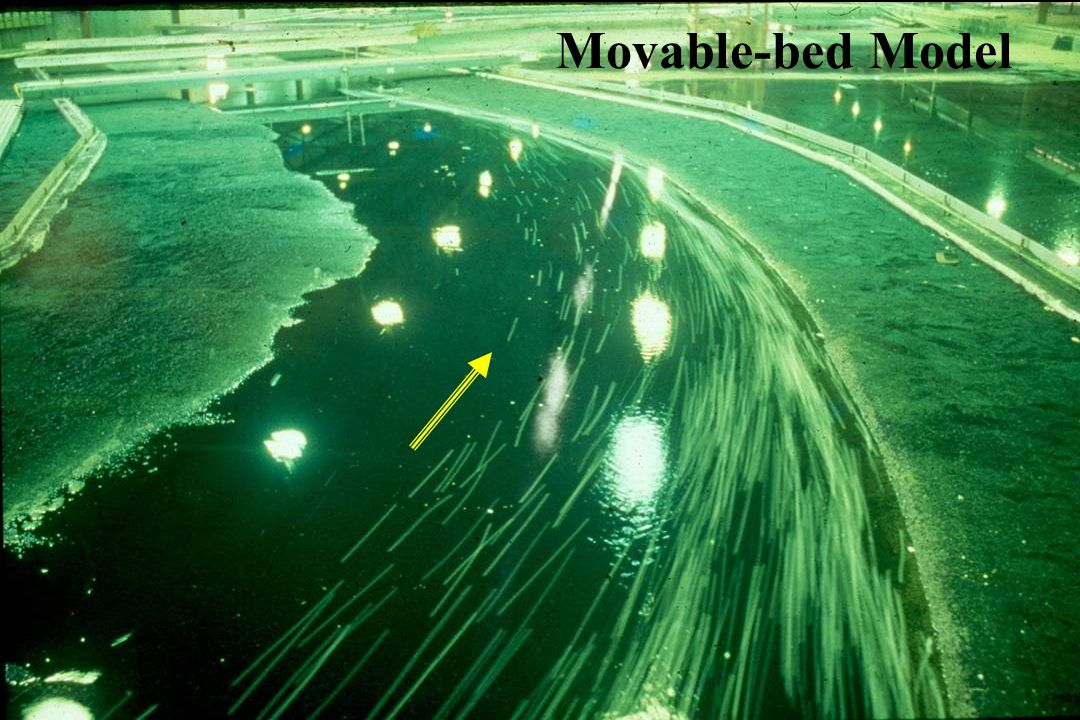 Movable-bed Model