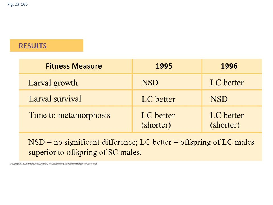 Fig. 23-16b RESULTS 1995 Fitness Measure1996 Larval growth Larval survival Time to metamorphosis LC better NSD LC better (shorter) LC better (shorter)
