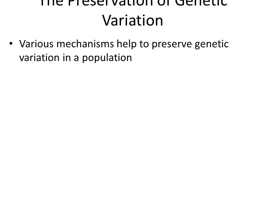 The Preservation of Genetic Variation Various mechanisms help to preserve genetic variation in a population