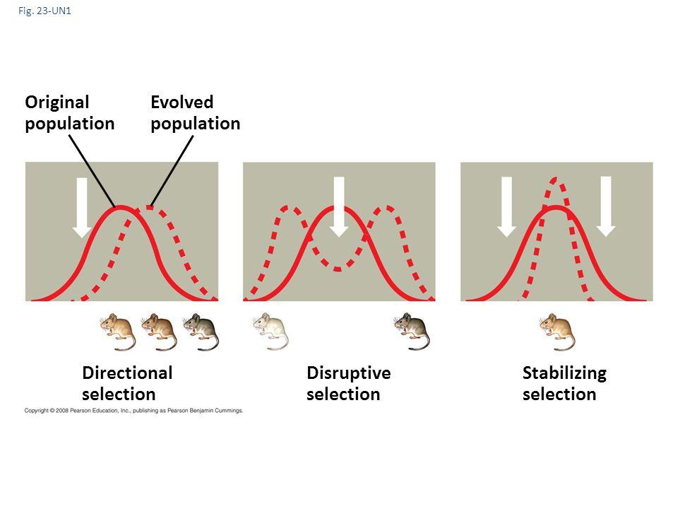 Fig. 23-UN1 Stabilizing selection Original population Evolved population Directional selection Disruptive selection