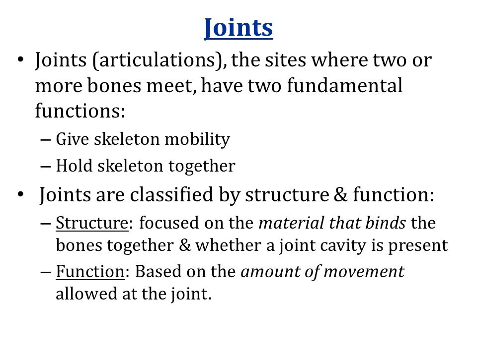 Joints Joints (articulations), the sites where two or more bones meet, have two fundamental functions: – Give skeleton mobility – Hold skeleton together Joints are classified by structure & function: – Structure: focused on the material that binds the bones together & whether a joint cavity is present – Function: Based on the amount of movement allowed at the joint.