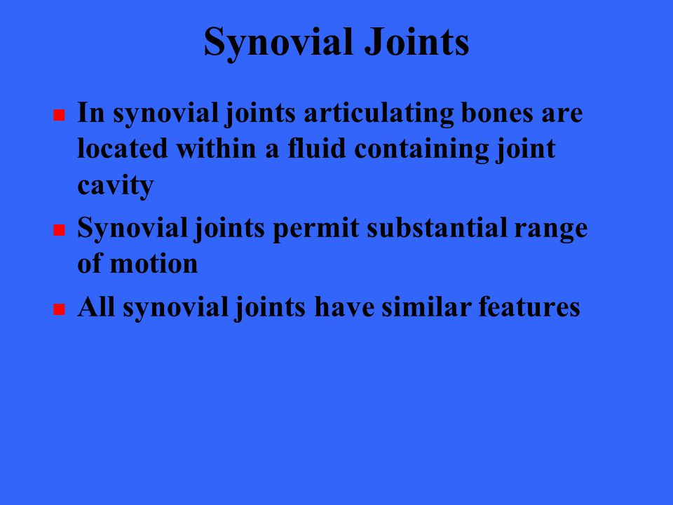 Synovial Joints In synovial joints articulating bones are located within a fluid containing joint cavity Synovial joints permit substantial range of m