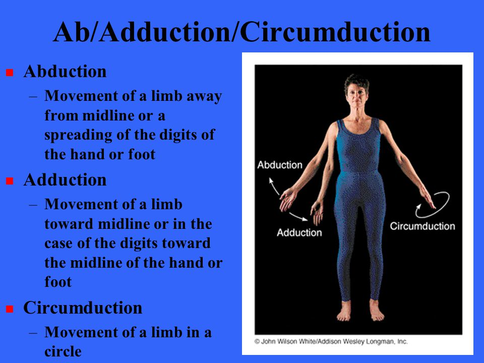 Ab/Adduction/Circumduction Abduction –Movement of a limb away from midline or a spreading of the digits of the hand or foot Adduction –Movement of a l