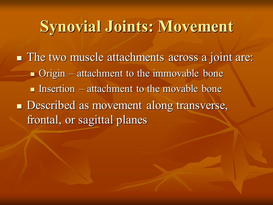 Synovial Joints: Movement The two muscle attachments across a joint are: The two muscle attachments across a joint are: Origin – attachment to the immovable bone Origin – attachment to the immovable bone Insertion – attachment to the movable bone Insertion – attachment to the movable bone Described as movement along transverse, frontal, or sagittal planes Described as movement along transverse, frontal, or sagittal planes
