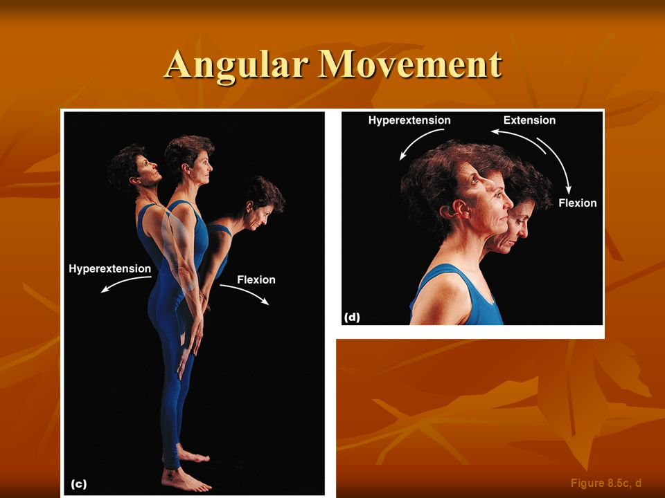 Angular Movement Figure 8.5c, d