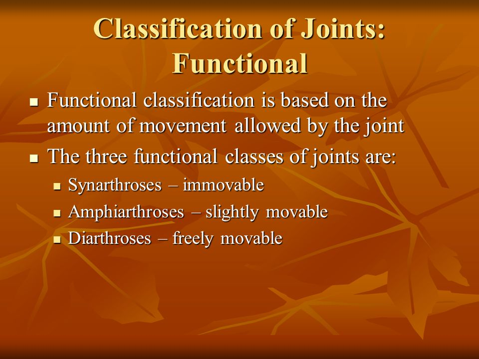 Classification of Joints: Functional Functional classification is based on the amount of movement allowed by the joint Functional classification is based on the amount of movement allowed by the joint The three functional classes of joints are: The three functional classes of joints are: Synarthroses – immovable Synarthroses – immovable Amphiarthroses – slightly movable Amphiarthroses – slightly movable Diarthroses – freely movable Diarthroses – freely movable