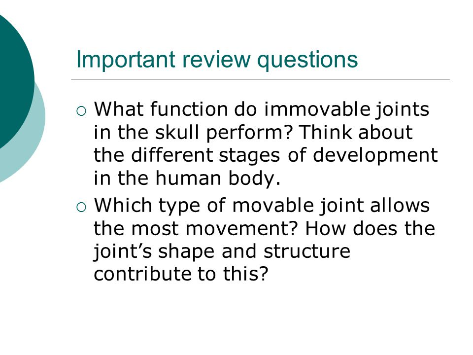 Important review questions  What function do immovable joints in the skull perform? Think about the different stages of development in the human body