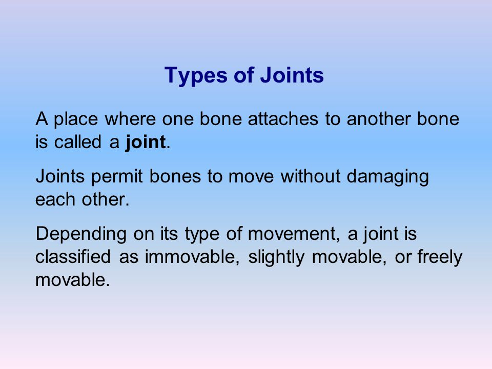 Types of Joints A place where one bone attaches to another bone is called a joint.