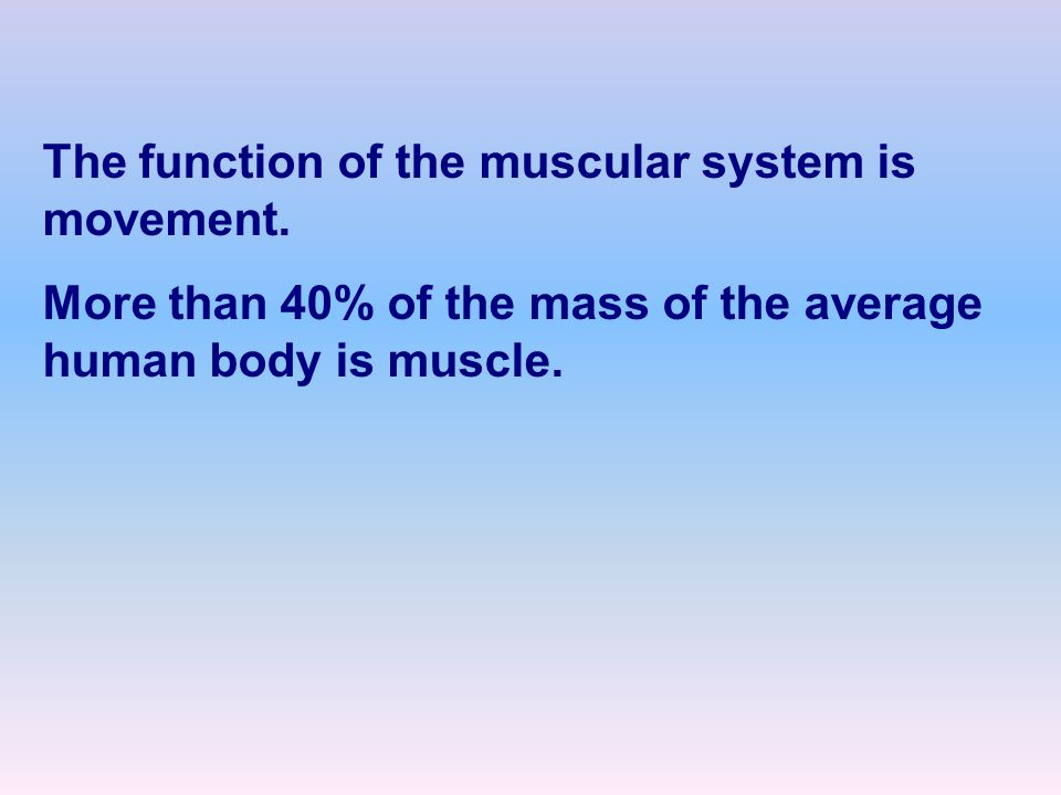 The function of the muscular system is movement.