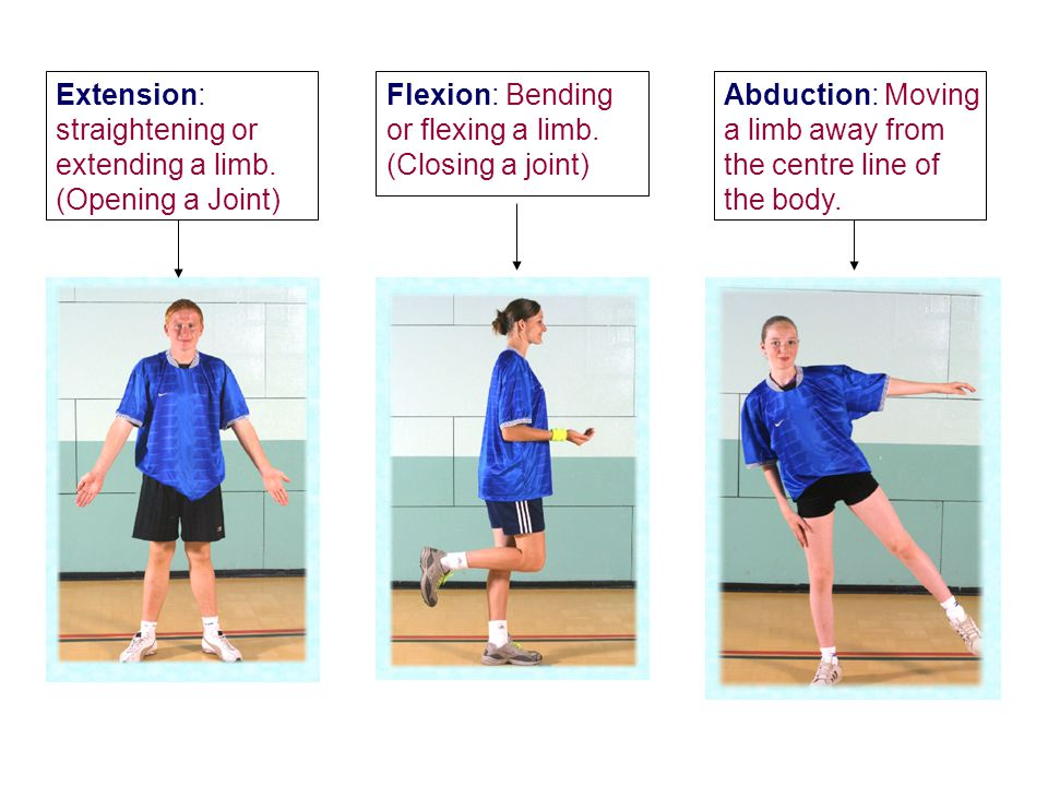Extension: straightening or extending a limb. (Opening a Joint) Flexion: Bending or flexing a limb. (Closing a joint) Abduction: Moving a limb away fr