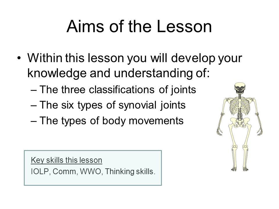 Aims of the Lesson Within this lesson you will develop your knowledge and understanding of: –The three classifications of joints –The six types of syn