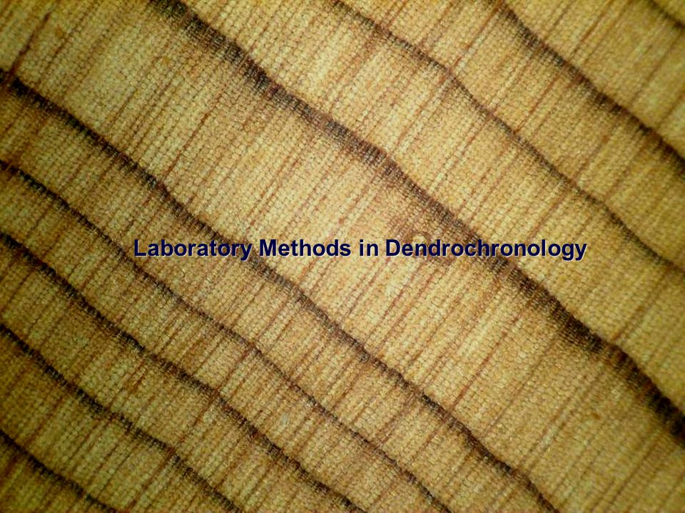 Imaging Systems = the future of dendrochronology.Imaging Systems = the future of dendrochronology.