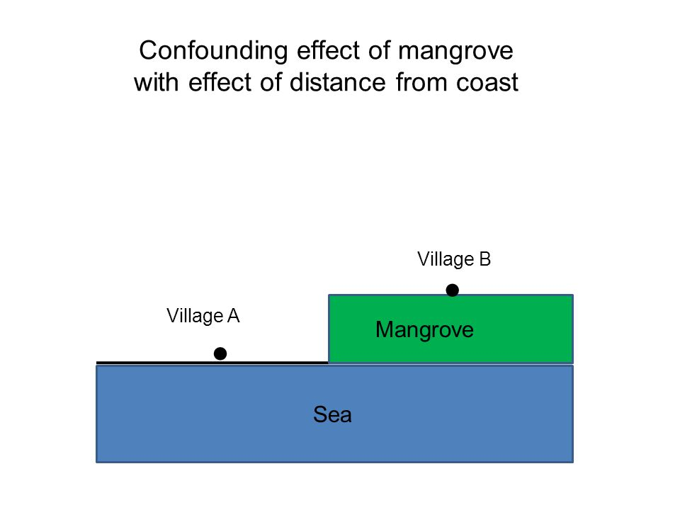 Confounding effect of mangrove with effect of distance from coast ● ● Village A Village B Mangrove Sea