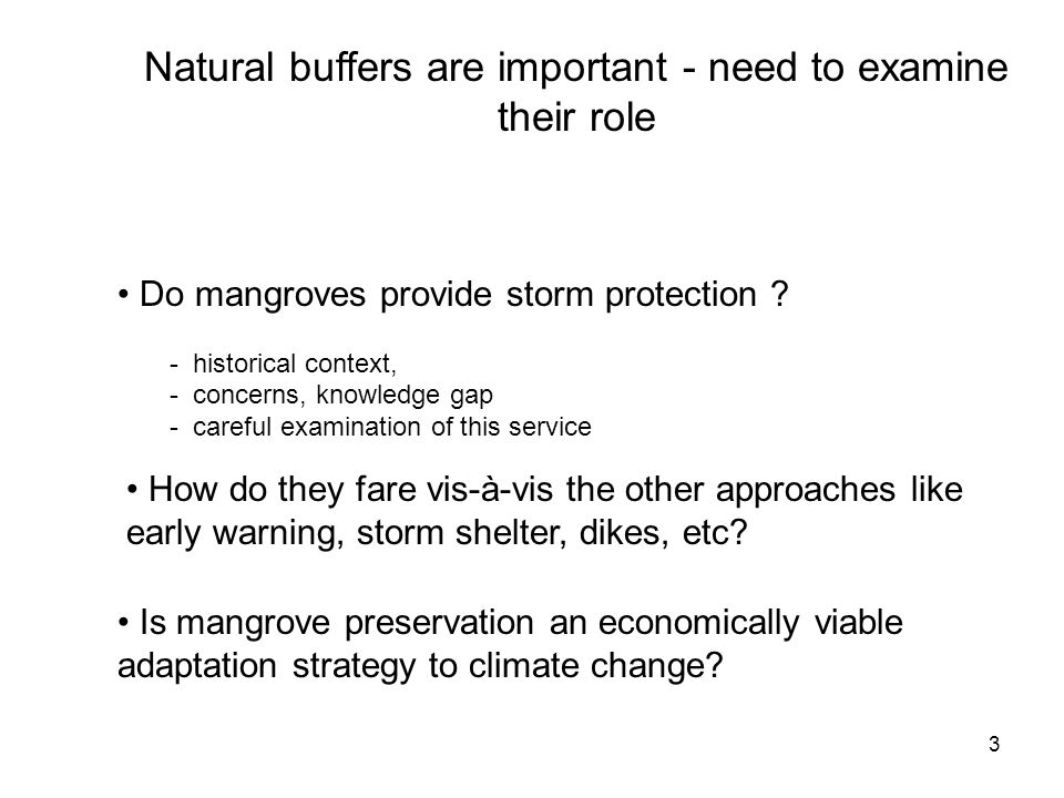 3 Natural buffers are important - need to examine their role Do mangroves provide storm protection .
