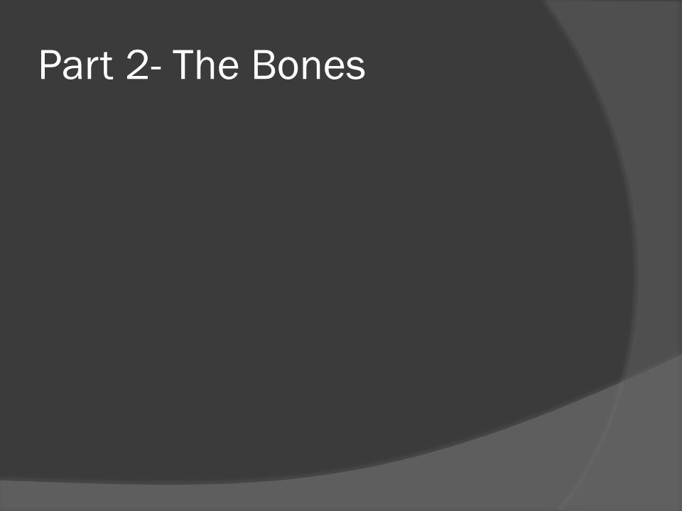 Part 2- The Bones