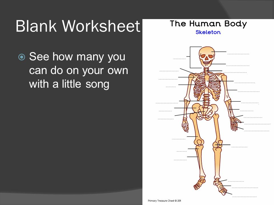 Blank Worksheet  See how many you can do on your own with a little song