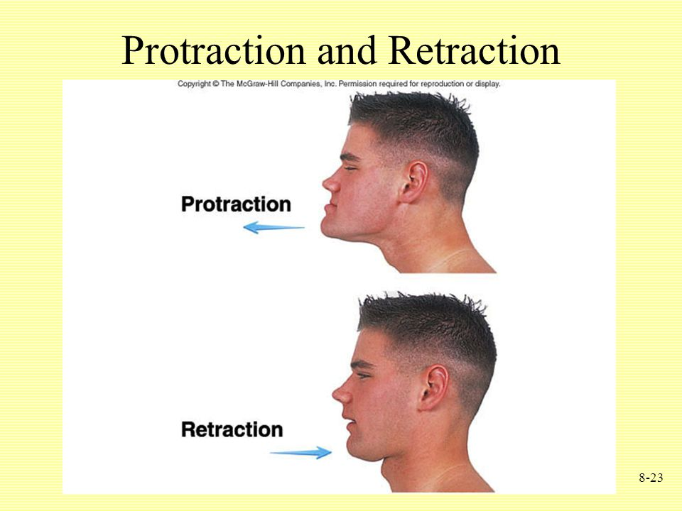 8-23 Protraction and Retraction