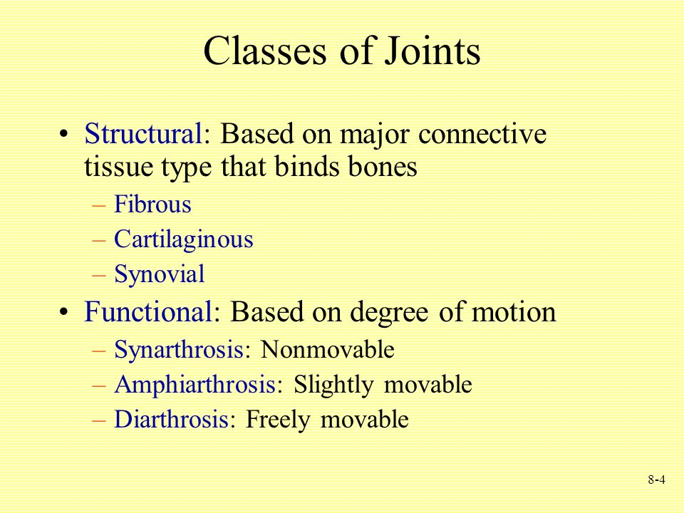 8-4 Classes of Joints Structural: Based on major connective tissue type that binds bones –Fibrous –Cartilaginous –Synovial Functional: Based on degree of motion –Synarthrosis: Nonmovable –Amphiarthrosis: Slightly movable –Diarthrosis: Freely movable