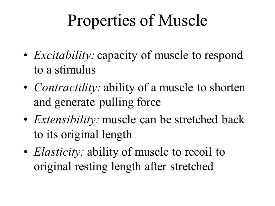 Microanatomy of Skeletal Muscle