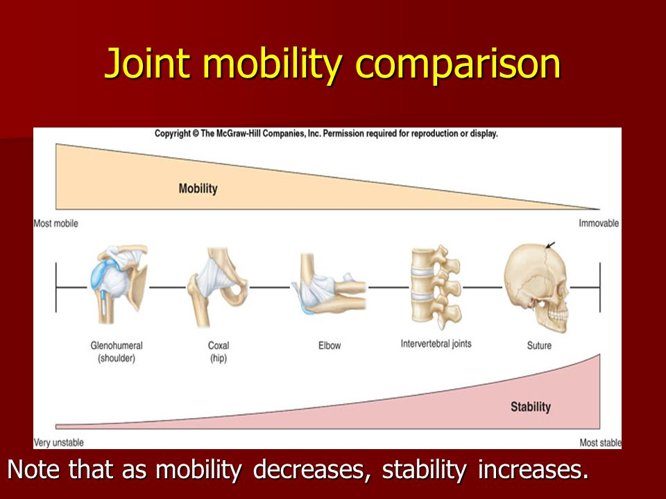 Joint mobility comparison Note that as mobility decreases, stability increases.
