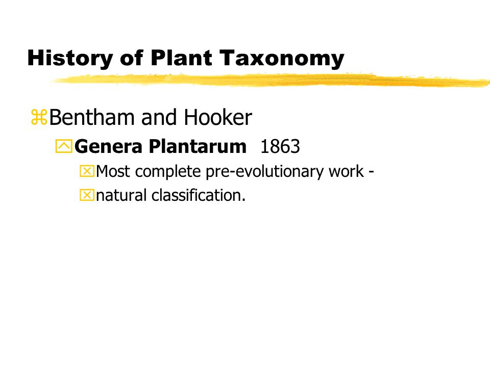 History of Plant Taxonomy zBentham and Hooker yGenera Plantarum 1863 xMost complete pre-evolutionary work - xnatural classification.