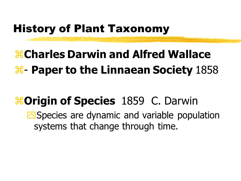 History of Plant Taxonomy zCharles Darwin and Alfred Wallace z- Paper to the Linnaean Society 1858 zOrigin of Species 1859 C.