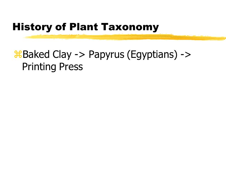 History of Plant Taxonomy zBaked Clay -> Papyrus (Egyptians) -> Printing Press