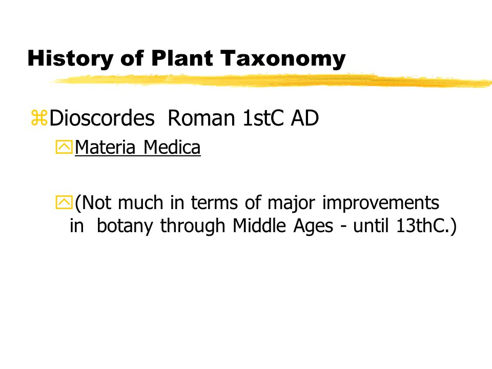 History of Plant Taxonomy zDioscordes Roman 1stC AD yMateria Medica y(Not much in terms of major improvements in botany through Middle Ages - until 13thC.)