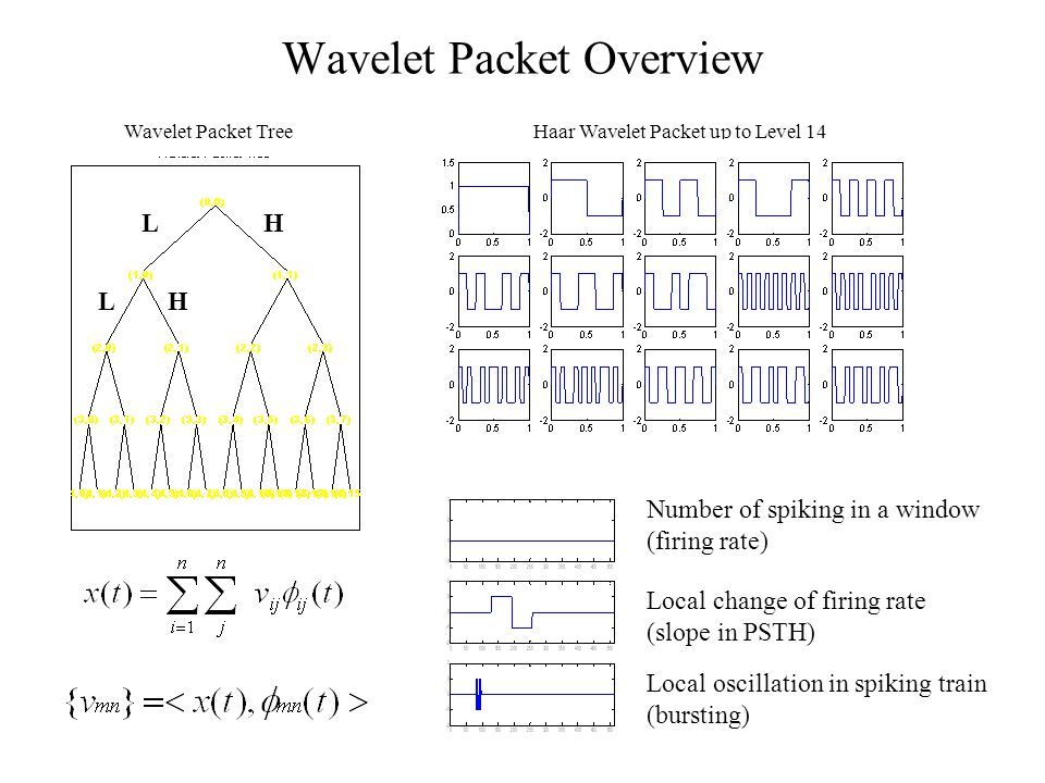Wavelet Packet Overview Wavelet Packet TreeHaar Wavelet Packet up to Level 14 Number of spiking in a window (firing rate) Local change of firing rate (slope in PSTH) Local oscillation in spiking train (bursting) LH LH