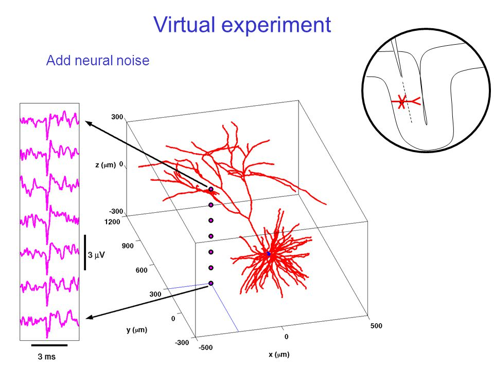 Virtual experiment Add neural noise