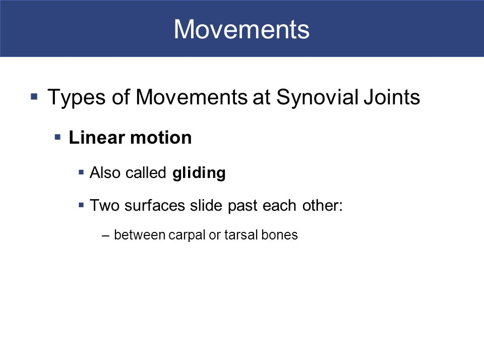 Movements  Types of Movements at Synovial Joints  Linear motion  Also called gliding  Two surfaces slide past each other: –between carpal or tarsal bones