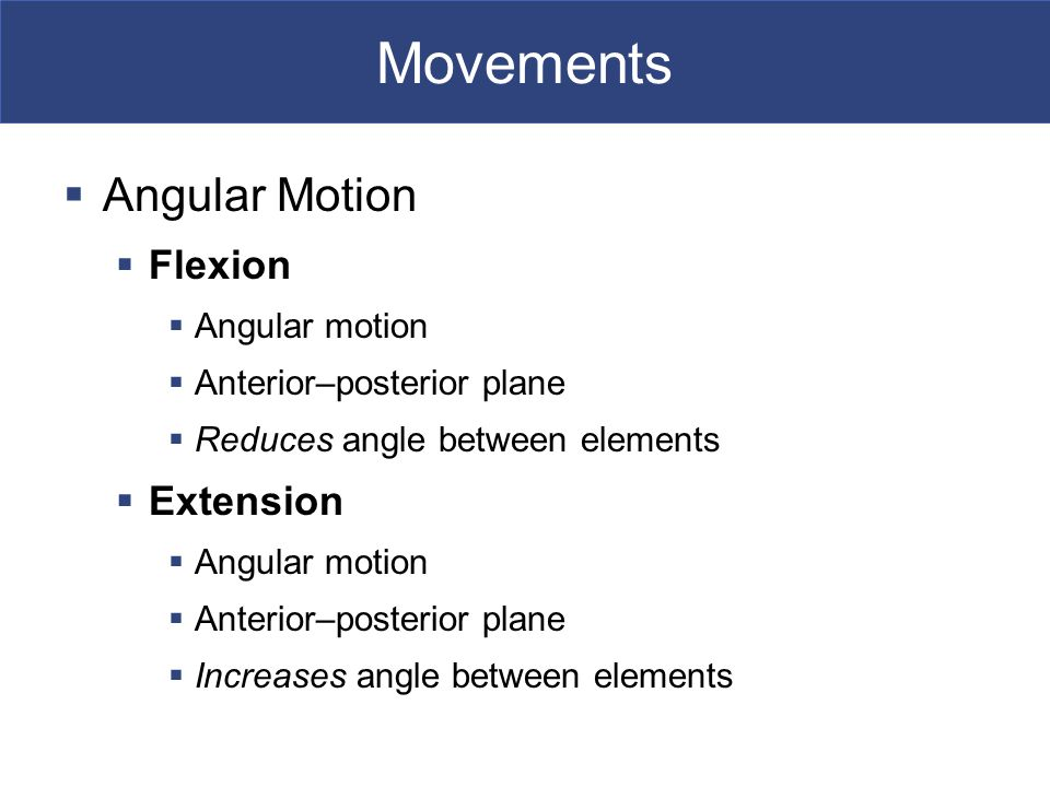 Movements  Angular Motion  Flexion  Angular motion  Anterior–posterior plane  Reduces angle between elements  Extension  Angular motion  Anterior–posterior plane  Increases angle between elements