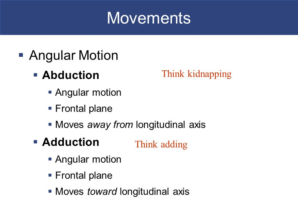 Movements  Angular Motion  Abduction  Angular motion  Frontal plane  Moves away from longitudinal axis  Adduction  Angular motion  Frontal plane  Moves toward longitudinal axis Think adding Think kidnapping