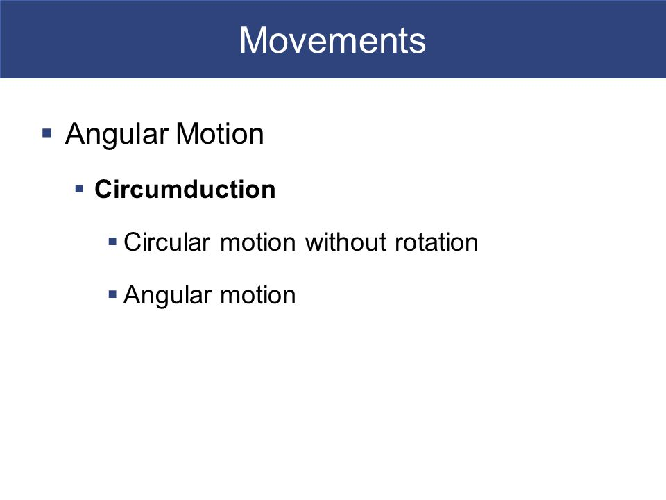 Movements  Angular Motion  Circumduction  Circular motion without rotation  Angular motion