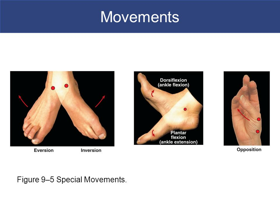 Movements Figure 9–5 Special Movements.