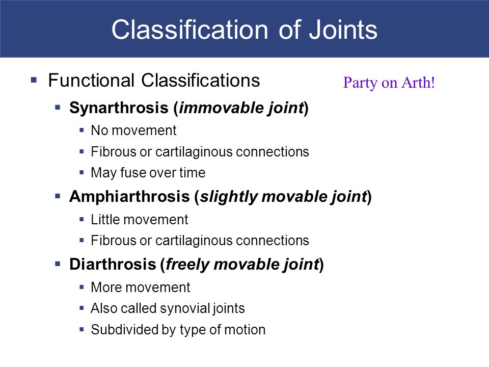Classification of Joints  Functional Classifications  Synarthrosis (immovable joint)  No movement  Fibrous or cartilaginous connections  May fuse over time  Amphiarthrosis (slightly movable joint)  Little movement  Fibrous or cartilaginous connections  Diarthrosis (freely movable joint)  More movement  Also called synovial joints  Subdivided by type of motion Party on Arth!