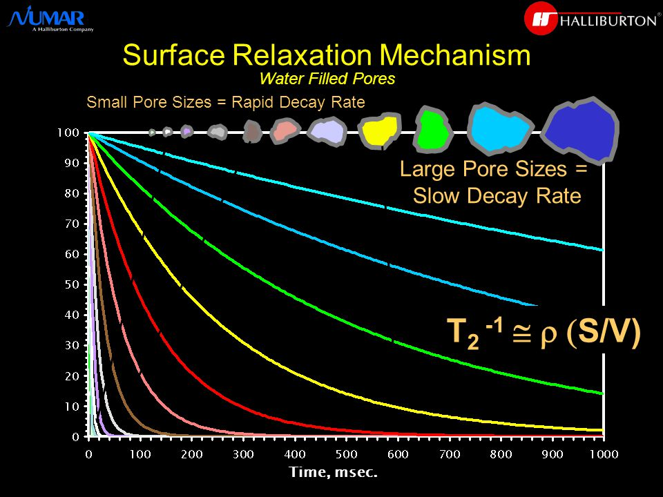 Surface Relaxation Mechanism Water Filled Pores Time, msec.