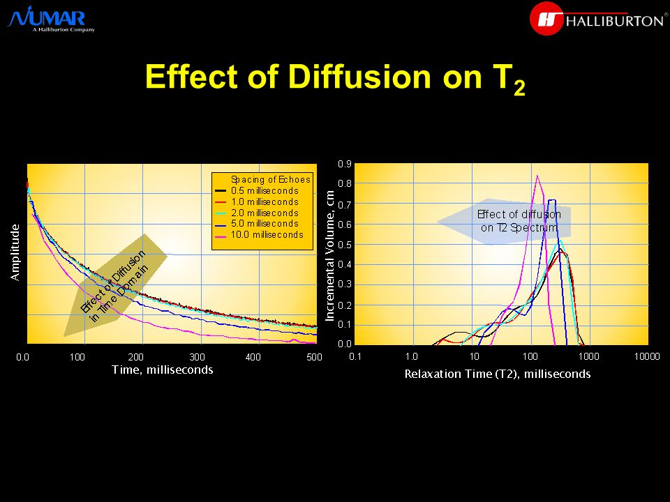 Effect of Diffusion on T 2
