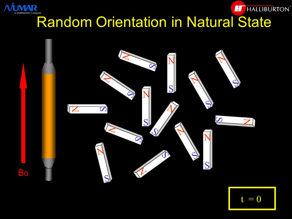 N S N S N S N S N S N S N S N S N S N S N S N S N S N S t = 0 Random Orientation in Natural State Bo